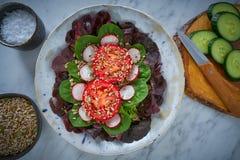 蕃茄沙拉用种子萝卜菠菜莴苣 库存照片