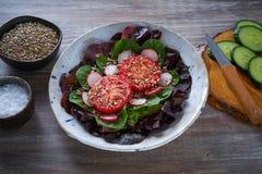 蕃茄沙拉用种子萝卜菠菜莴苣 库存图片
