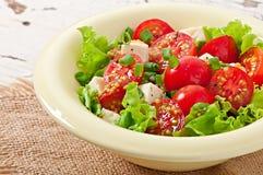 蕃茄沙拉用莴苣,乳酪 免版税图库摄影