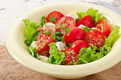 蕃茄沙拉用莴苣,乳酪 库存图片