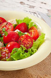 蕃茄沙拉用莴苣,乳酪 库存照片