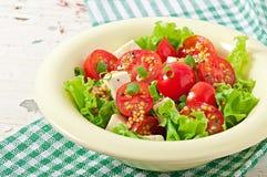 蕃茄沙拉用莴苣,乳酪 免版税库存照片