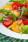蕃茄沙拉 免版税库存照片