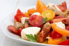 蕃茄沙拉 库存照片