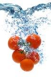 蕃茄深深地属于水 库存图片