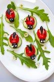 蕃茄瓢虫开胃菜 图库摄影