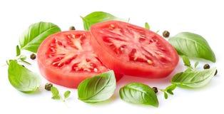 蕃茄用草本 免版税库存照片
