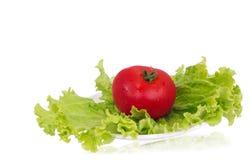 蕃茄用说谎在板材的莴苣 库存图片