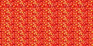 蕃茄纹理 免版税库存图片