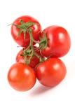 蕃茄群 免版税库存图片