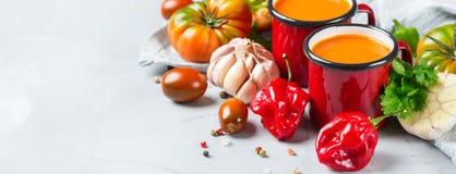 蕃茄胡椒汤gazpacho用大蒜 图库摄影