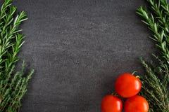 蕃茄草本 图库摄影