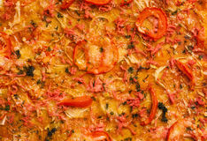 蕃茄薄饼有葱和肉背景 免版税库存照片