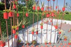 蕃茄餐具室 库存图片