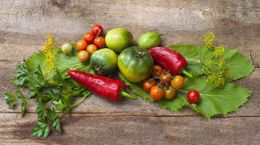 蕃茄,烹调用保存的草本在老木头 免版税图库摄影