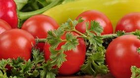 蕃茄,红色和黄色胡椒,在木背景的荷兰芹 免版税库存图片