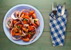 蕃茄,葱,在一块板材的茴香在木背景 图库摄影