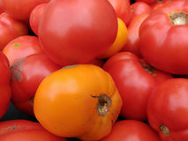 蕃茄, Greenmarket,联合广场, NYC, NY,美国 免版税库存照片
