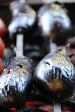 蕃茄&土豆 鲜美,可口,开胃,健康 木头被射击的格栅菜 烤菜 烹调在串 库存照片