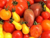 蕃茄08 库存照片