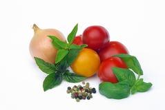 蕃茄14 库存照片