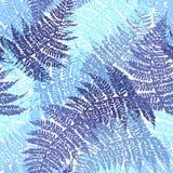 蕨无缝的模式 库存图片