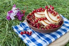 薄煎饼用在绿草背景的新鲜的莓果  库存照片