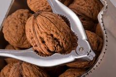薄脆饼干充分的螺母罐核桃 免版税库存图片