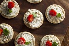 薄脆饼干和乳酪开胃小菜 图库摄影