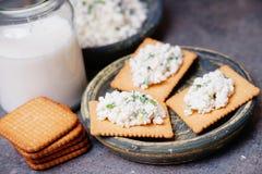 薄脆饼干曲奇饼用酸奶干酪和杯牛奶 免版税库存照片
