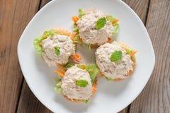 薄脆饼干用在白色板材的金枪鱼色拉 免版税库存图片