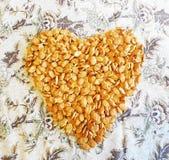 薄脆饼干的心脏以鱼的形式在轻的背景 库存图片