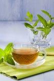 薄荷的清凉茶 免版税库存照片