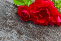 薄荷的花和叶子在树 免版税库存照片