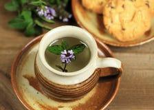 薄荷的茶和曲奇饼 免版税库存照片