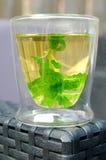 薄荷的茶在庭院里 免版税库存照片
