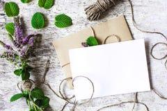 薄荷的野花和空白的白色贺卡花束  免版税库存照片