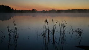 薄雾上升在湖 股票视频