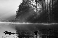 薄雾和太阳,湖风景 免版税图库摄影
