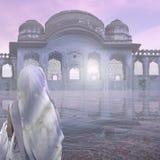 薄雾在印度 库存照片
