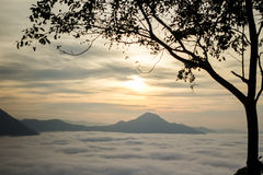 薄雾在城镇可汗的Phu Tok 图库摄影