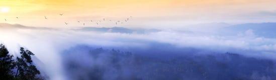 薄雾日出 库存图片