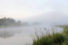 薄雾早晨河 库存照片