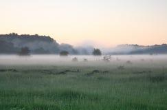 薄雾早晨 库存照片