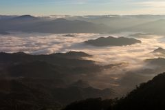 薄雾海在热带雨林的Th的北部的 库存图片