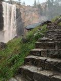 薄雾的湿石步落后 库存图片