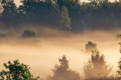 薄雾风景风景 免版税图库摄影