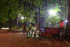 薄雾,在路面的长凳在轻的灯笼在晚上 图库摄影