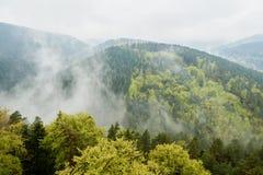 薄雾,山,从上面被看见的森林 免版税库存照片