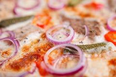 薄饼纹理用开胃肉、葱、嫩黄瓜和辣椒p 免版税库存照片
